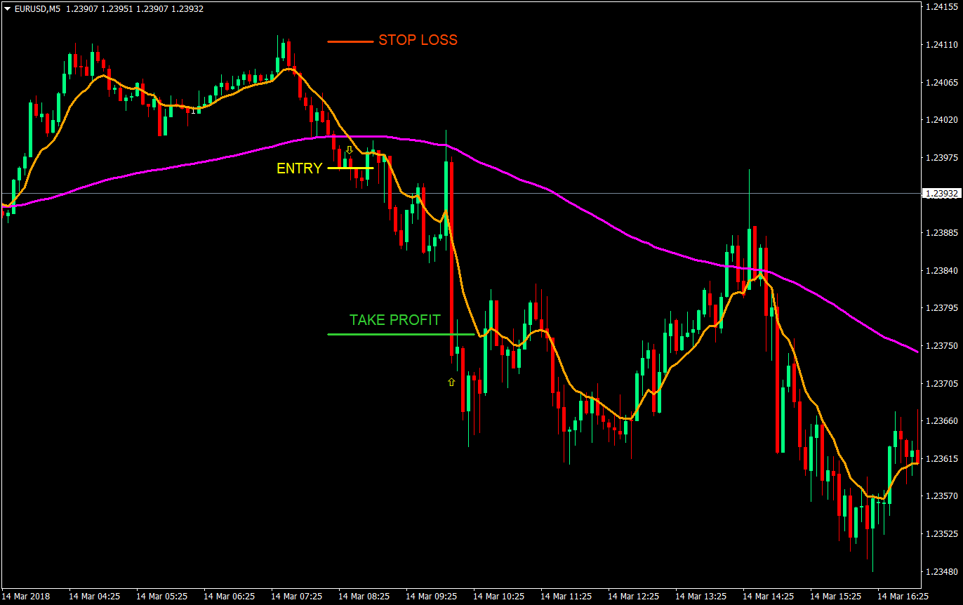 20 pips per day forex