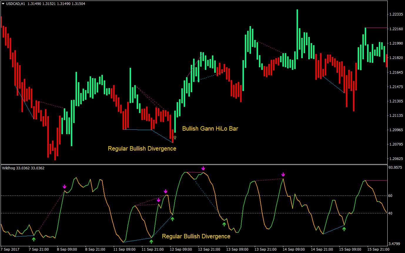 Forex Trading Strategy | Forex MT4 Indicators