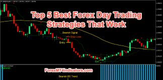 Forex Day Trading Strategies That Work
