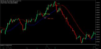 Macd histogram trading forex market long trend
