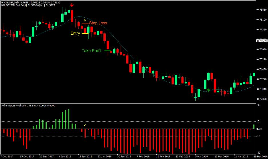 Yang Trader Forex Trading Strategy 3