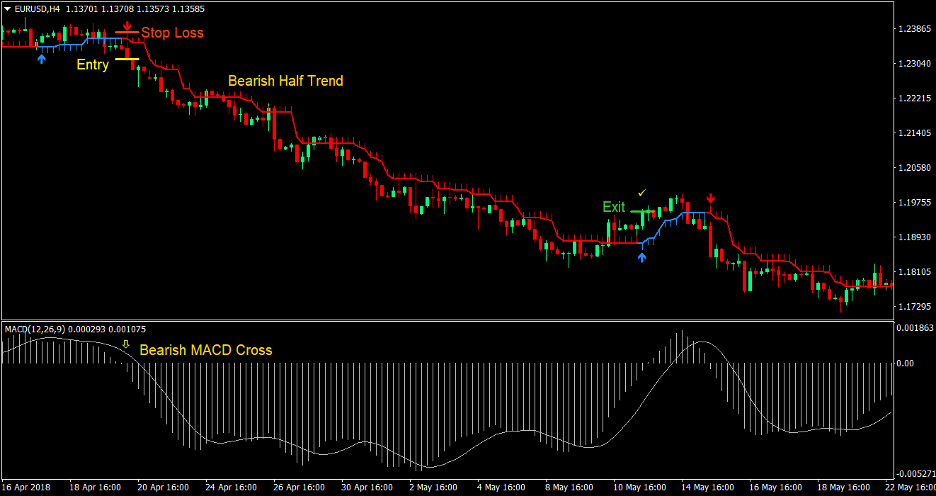 MACD Half Trend Forex Trading Strategy 3