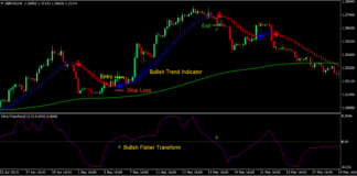 Trend Indicator Signals Forex Trading Strategy 1