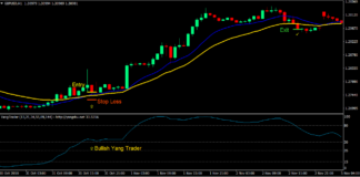 Momentum Crossover Forex Trading Strategy 1