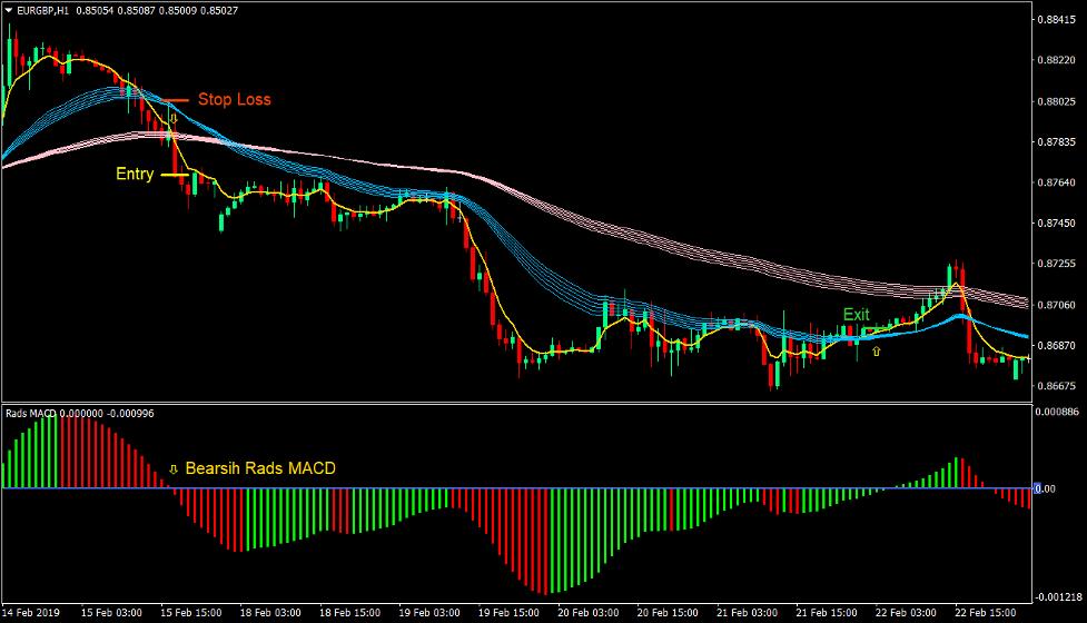 Rads MACD Trend Forex Trading Strategia 4