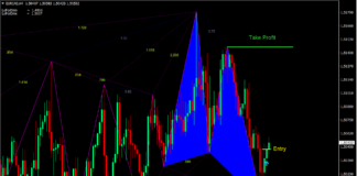 Gartley Pattern Forex Trading Strategy