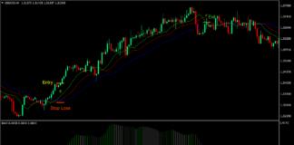 RAVI Alligator Forex Trading Strategy
