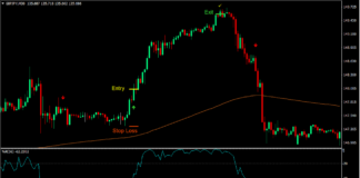 William R Momentum Trading Strategy